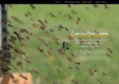 Lapiculteur.com fait peau neuve !