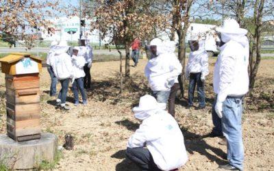 Journée Nature avec le Conseil Municipal de Valence d'Agen