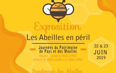 En passant par les moulins l'expo des abeilles en péril